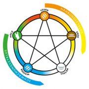 Die 5 Wandlungsphasen als Grafik